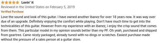 Ibanez AEWC400 Review 03